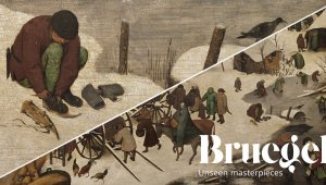 Bruegel e i suoi originali pattini